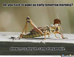 Small Picture Jiminy Cricket Memes Best Collection of Funny Jiminy Cricket Pictures