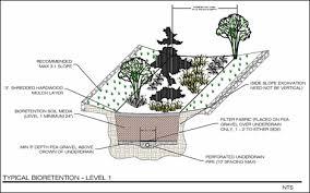 Small Picture Amazing Design Rain Garden Design Rain Gardens Demystified Why