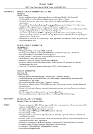 Cognos Resume Sample Cognos Developer Resume Samples Velvet Jobs 2