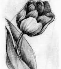نتيجة بحث الصور عن رسم بقلم الرصاص