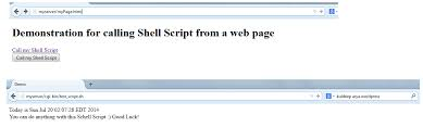 Demo: How to invoke a Shell Script on a HTML Page being served by ...