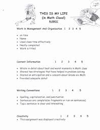 essay writing mathematics essay writing