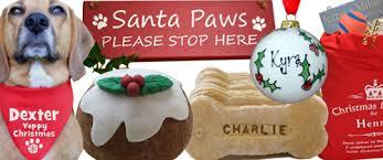 Christmas gift inspiration for your pet   Urban Paws UK