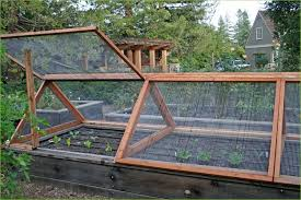 Small Picture Raised Vegetable Garden Design Gardening Ideas