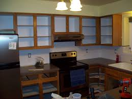 Painting Maple Kitchen Cabinets Purple Kitchen Maple Cabinets Quicuacom