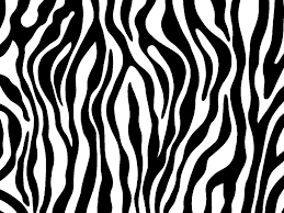 Small Picture Zebra print photo zebraprintjpg animal coloring Pinterest
