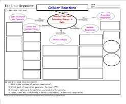unit organizer routine template graphic plan unit organizer