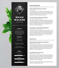 Creative Marketing Resume The 17 Best Resume Templates For Every Type Of Professional