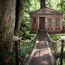 10 Amazing Tree House Hotels  Brit  CoCoolest Tree Houses