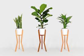ips 2 indoor planter stand