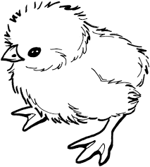 Easter Chick Coloring Pages Baby Page And Curiertech