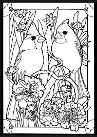 Small Picture cardinal coloring page Coloring Feathered Friends Pinterest