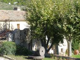 olive garden 12 99 special olive garden orlando olive garden canton ga