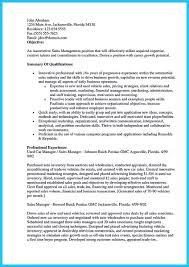resumes online storekeeper resume sample curriculum resume vitae    car salesman resume example and job description for car salesman on resume   car  s