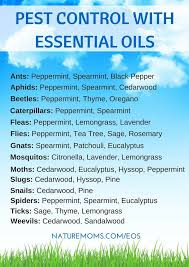 Essential Oils Pest Control Chart