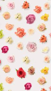 iphone 6 wallpaper floral.  Wallpaper Abstract Colorful Flower Floral Pattern Background IPhone 6 Wallpaper  Wallpaper On Iphone 6 Wallpaper N