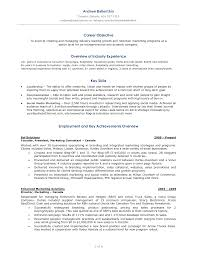 Social Media Resume Summary Job And Resume Template