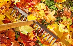 Image result for outside home maintenance in fall