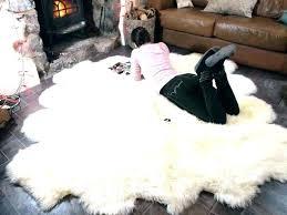 costco sheepskin rug sheepskin area rug sheep skin blanket sheepskin rug sheepskin rug large faux costco sheepskin rug