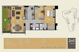 Ada Bathroom Design Ideas Custom Design