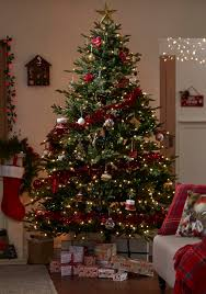 Give your living space a real Traditional Christmas makeover with gold, red  and green decorations
