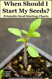Seed Starting Chart Zone 6 When Should I Start Seeds Printable Charts For When To
