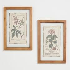 botanical prints framed linen wall art set of 2 on botanical wall art set of 2 with botanical prints framed linen wall art set of 2 world market