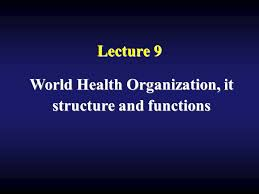 Lecture 9 World Health Organization It Structure And