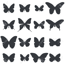 Set Of Butterfly Shapes Isolated On White Background Vector