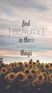 Inspirational Quotes About Beauty Within Best of Inspirational Quotes About Beauty Find Beauty In The Small Things