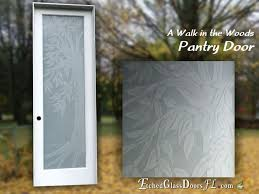 pantry door with frosted glass and nature theme