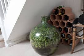 sealed bottle garden david latimer 3