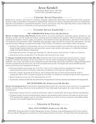 Executive Resume Examples   Writing Tips   CEO  CIO  CTO   Resume            Outstanding Excellent Resume Example Examples Of Resumes