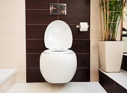 average toilet installation costs in
