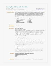 28 Security Guard Resume Examples Professional Template Best