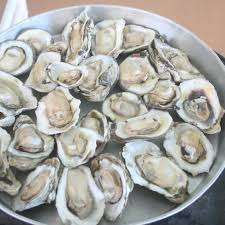 Fresh Florida Seafood from Seafood Atlantic