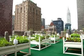 waldorf astora rooftop garden