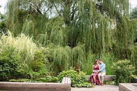 large size of botanical gardens wichita ks botanica lights hotels near at s