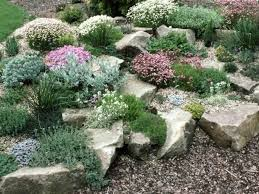 Small Picture Best 25 Rockery garden ideas on Pinterest Succulent rock garden