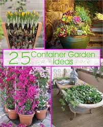 Amazing Of Container Vegetable Garden Plans Stunning Design Container Garden Plans Pictures