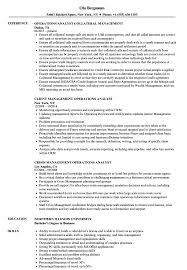 Management Operations Analyst Resume Samples Velvet Jobs