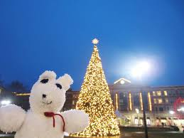 Dayton Ohio Christmas Tree Lighting Violets Silver Lining Things To Do In Dayton Christmas In