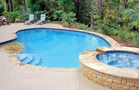 swimming pool backyard. Unique Backyard Img0 43 Marvelous Backyard Swimming Pool Ideas And S