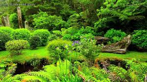 Small Picture BEAUTIFUL GARDENS NEW ZEALAND YouTube