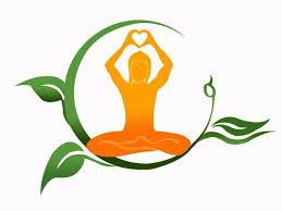 apex yoga and studio