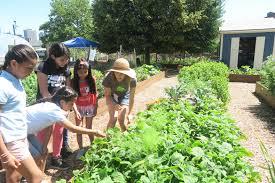community gardening. Delighful Gardening Inspiring Urban Farm Teaches Kids How To Grow Their Own Organic Food With Community Gardening N