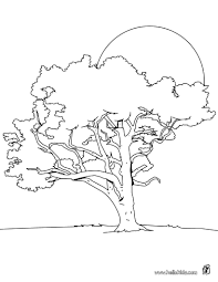 Small Picture TREE coloring pages Coloring pages Printable Coloring Pages