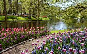 free flower garden wallpapers. Delighful Garden 3840x2400 Garden Wallpapers High Quality  Download Free On Flower D