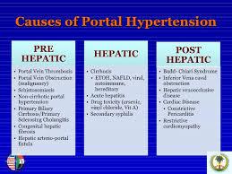 portal hypertension blood pressure
