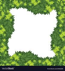 A Nature Green Border